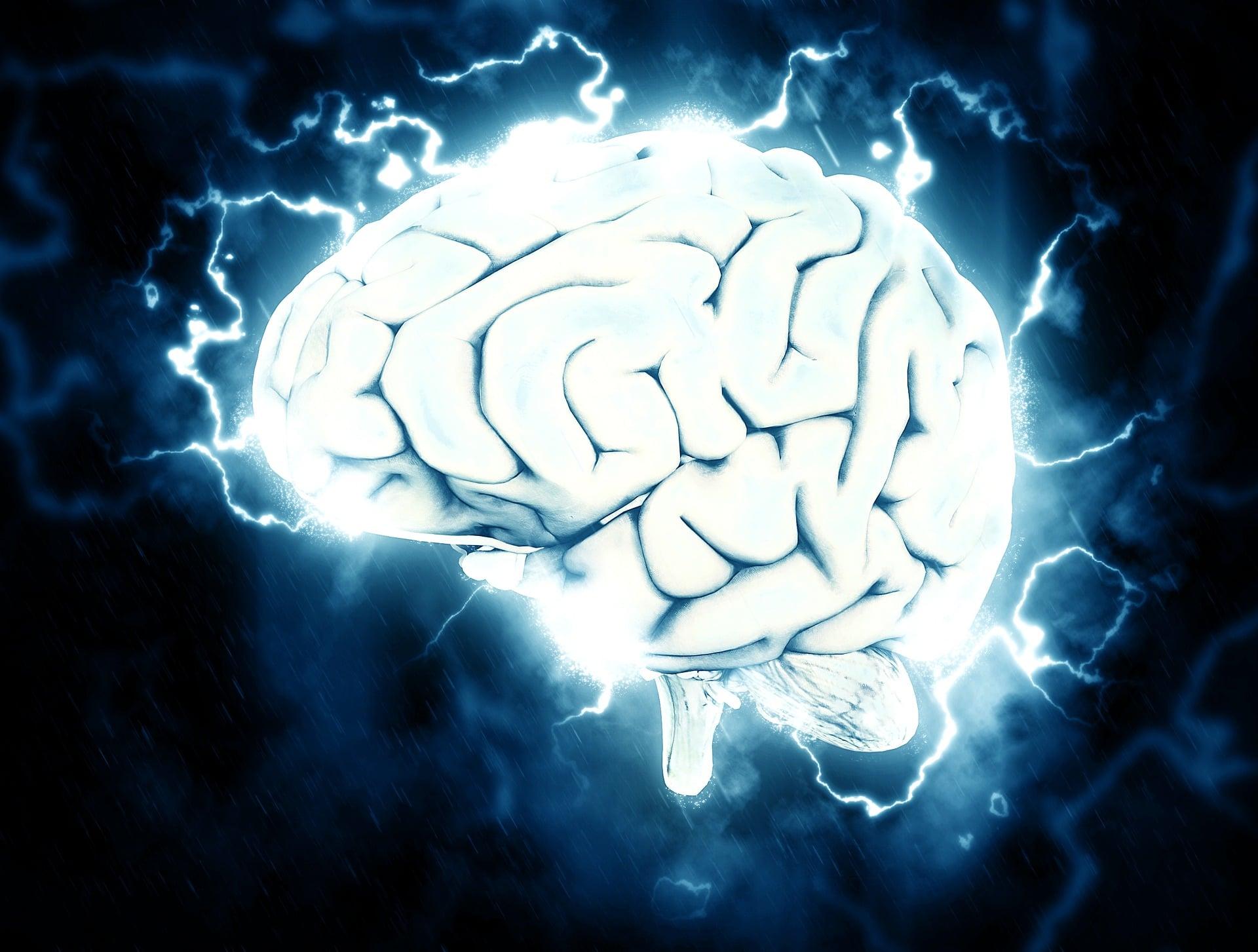 La mémoire de notre cerveau, pourquoi est-ce une énigme scientifique ?