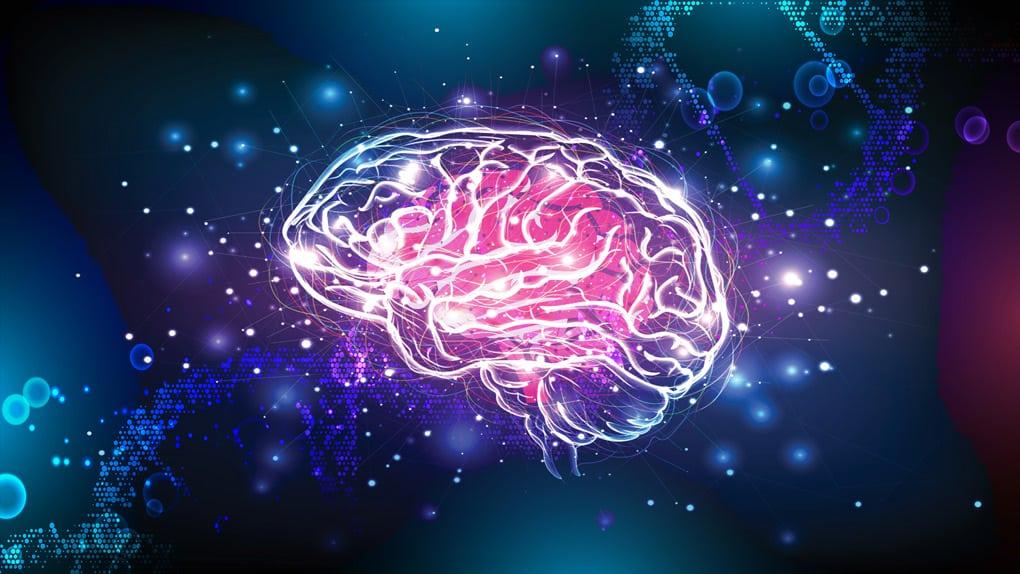 La mémoire est-elle cellulaire, cérébrale ou spirituelle ?