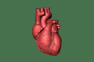 La cohérence cardiaque les bienfaits sciences mystérieuses
