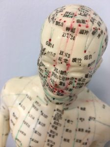le réseau de biophotons a une structure identique aux méridiens d'acupuncture.