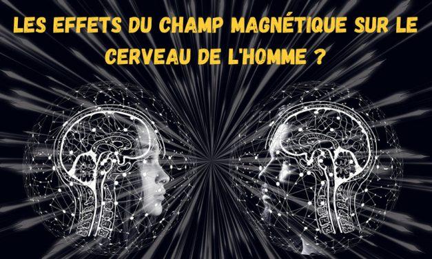 La surprenante decouverte d'un sixième sens magnetique chez l'homme