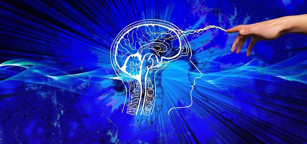 Conscience et métaphysique
