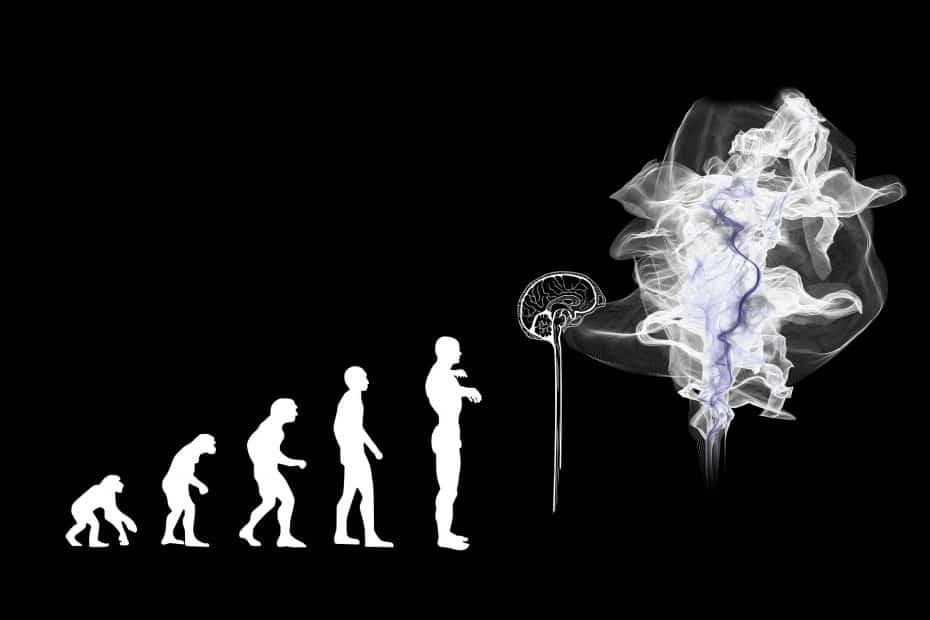 Quels sont les arguments qui vont à l'encontre de la théorie de l'évolution ?