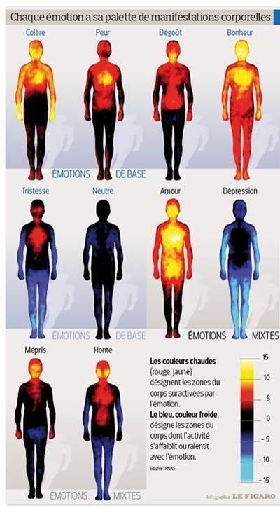Impact des émotions sur le corps humain