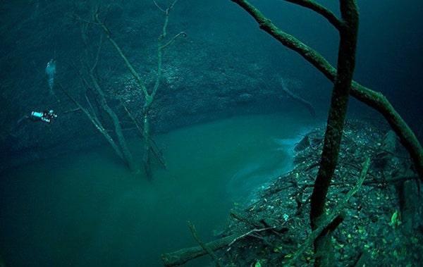 La rivière sous-marine du Cenote Angélita