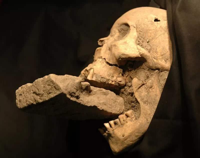 L'étonnante découverte d'un cimetière de vampires